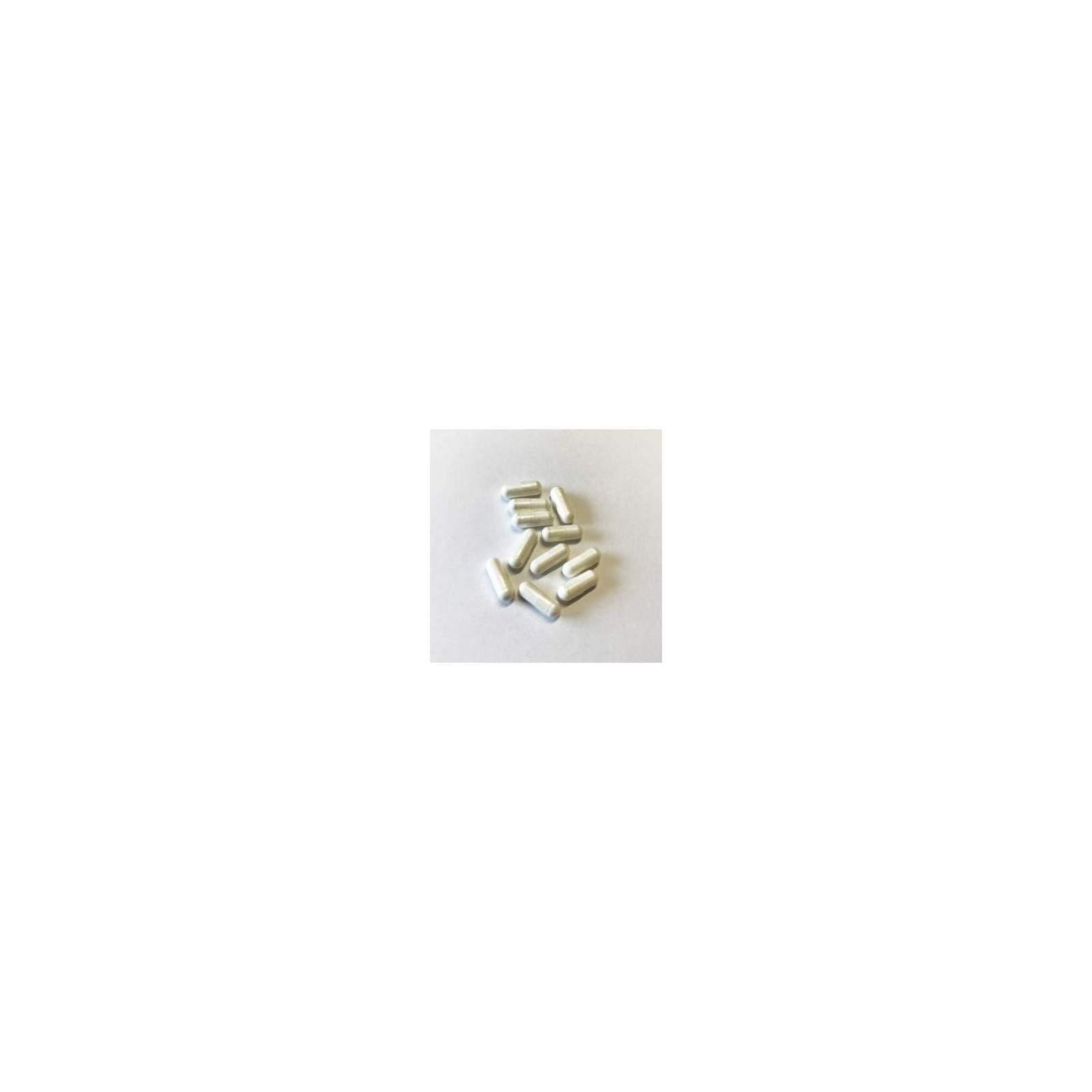 Calcium Magnesium 2:1 120 Kapseln
