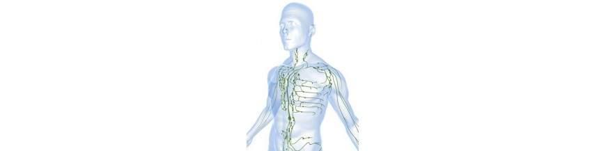 wo das Lymphsystem nicht funktioniert ist es verseucht, verstopft und vergiftet